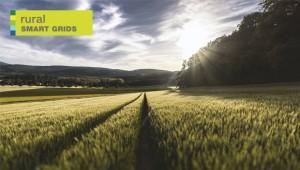 rural_smart_grid_2015